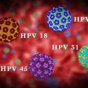 AccuPid HPV Genotyping