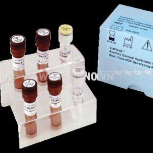 Solgent DiaPlexQ™ 5 types Corneal Dystrophy (CD) Genotyping Kit