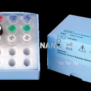 Solgent DiaPlexQ™ Influenza Virus A Subtype Detection Kit