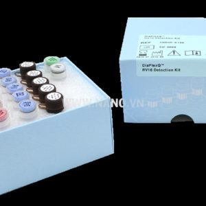 Solgent DiaPlexQ™ RV16 Detection Kit