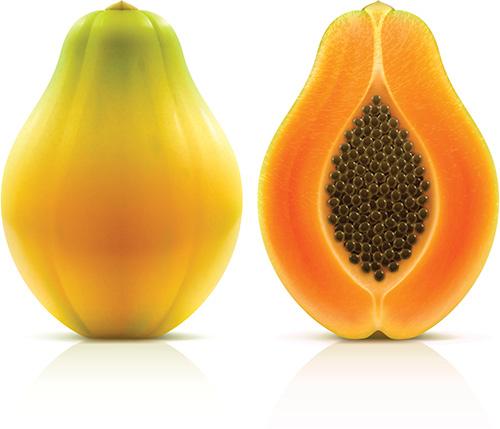 AccuPid Papaya CHY Detection Kit